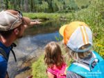 Walking Mountains Summer Science Camps