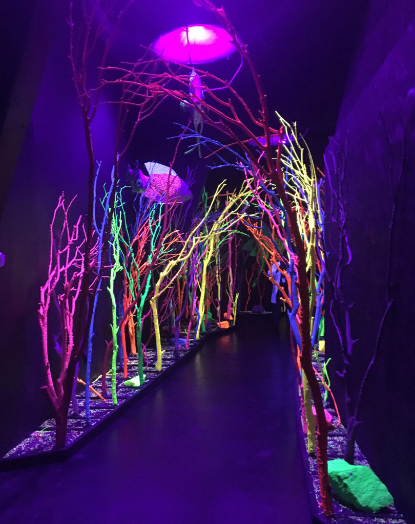 A miulti-generational family outing to Meow Wolf is filled with multi-sensory experiences to ignite curiosity and create lasting memories.