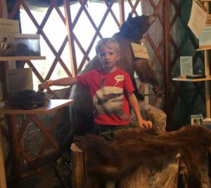 The Epic Discovery Nature Discovery Center features an array of wildlife exhibits and artifacts.