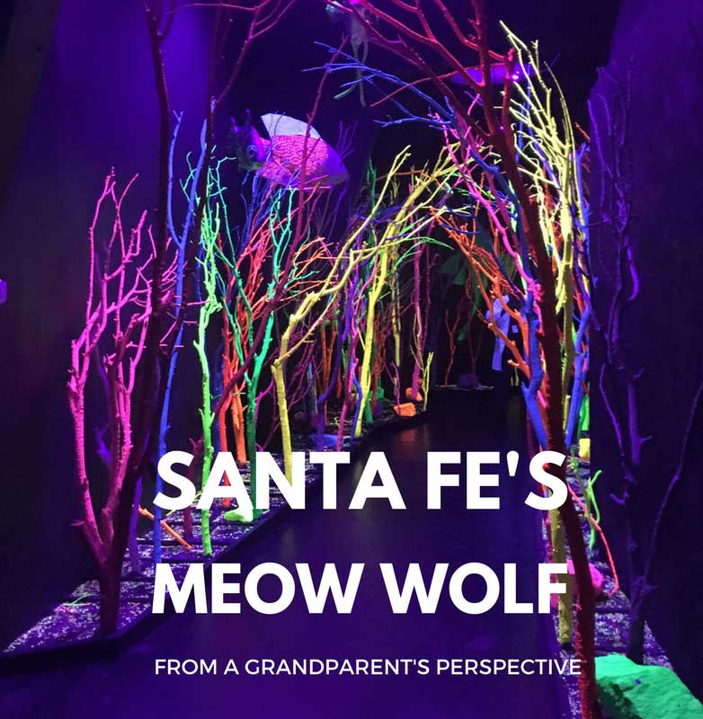 Meow Wolf is a multi-generational activity through the art and technology of Meow Wolf was that the entire family was involved and interacting and sharing the sights, sounds, and curiosity of hidden niches.