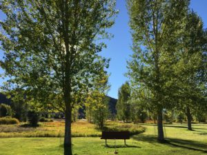 Fall in the Rocky Mountains is the perfect time for a family getaway.