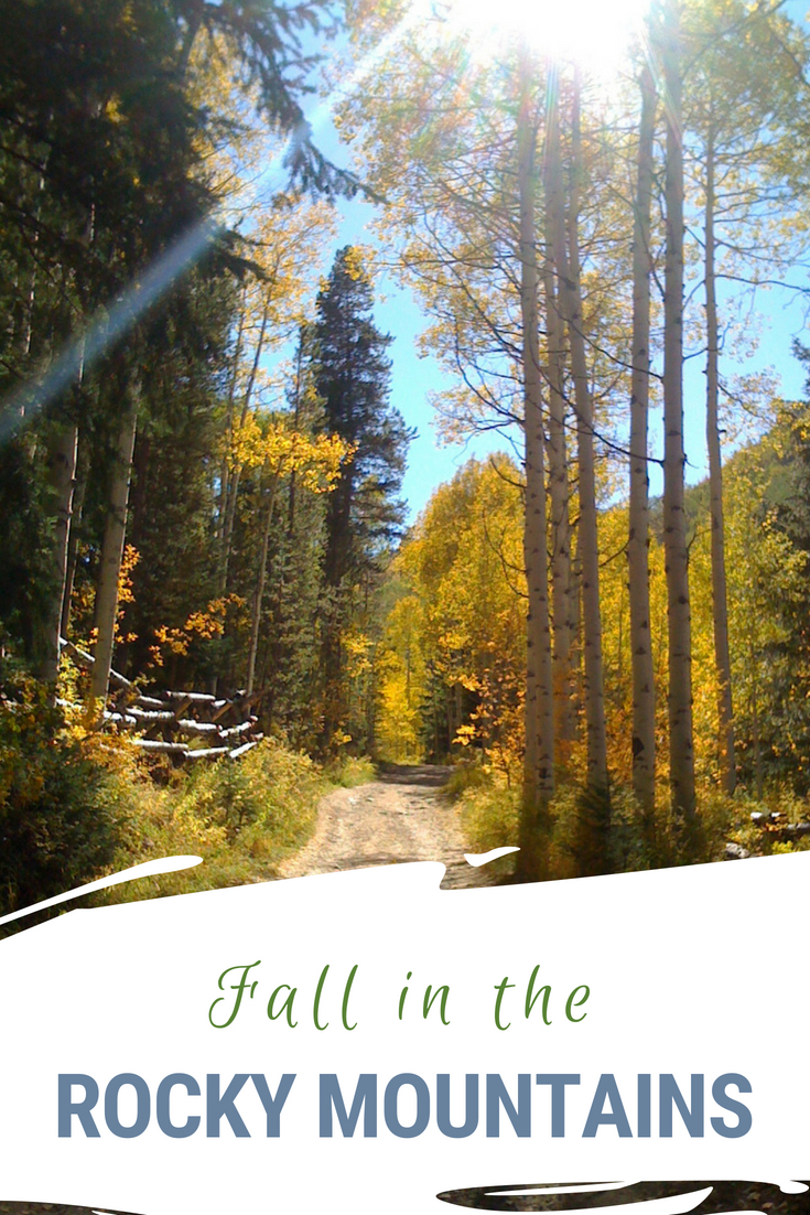 Fall in the Colorado Rocky Mountains is spectacular. The aspen leaves turn golden and discounts at hotels and restaurants abound.  It is the perfect time for a family getaway. #VisitColorado #ColoradoTravel #FallFun #Hiking #AspenLeaves