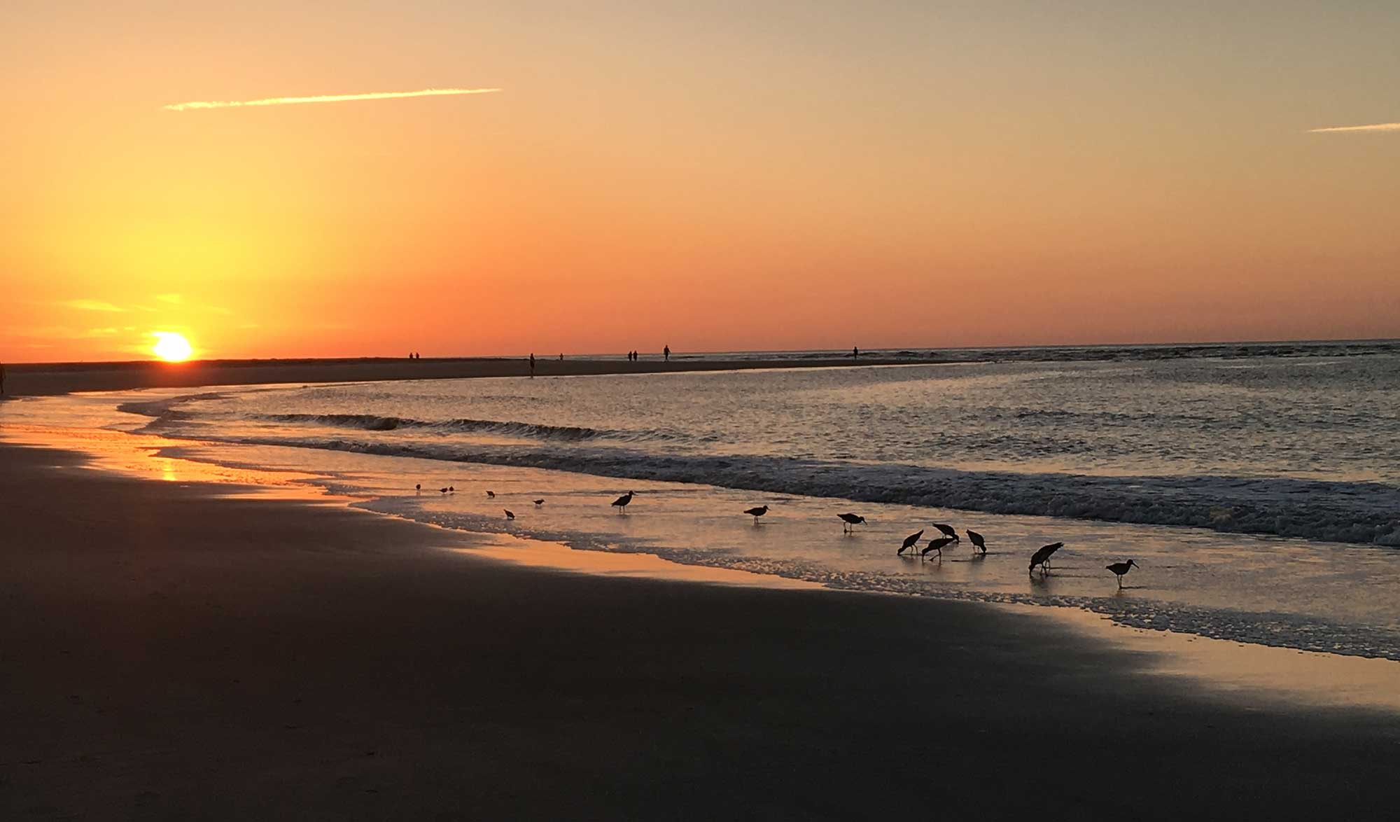 Best Places To Fish On St Simons Island
