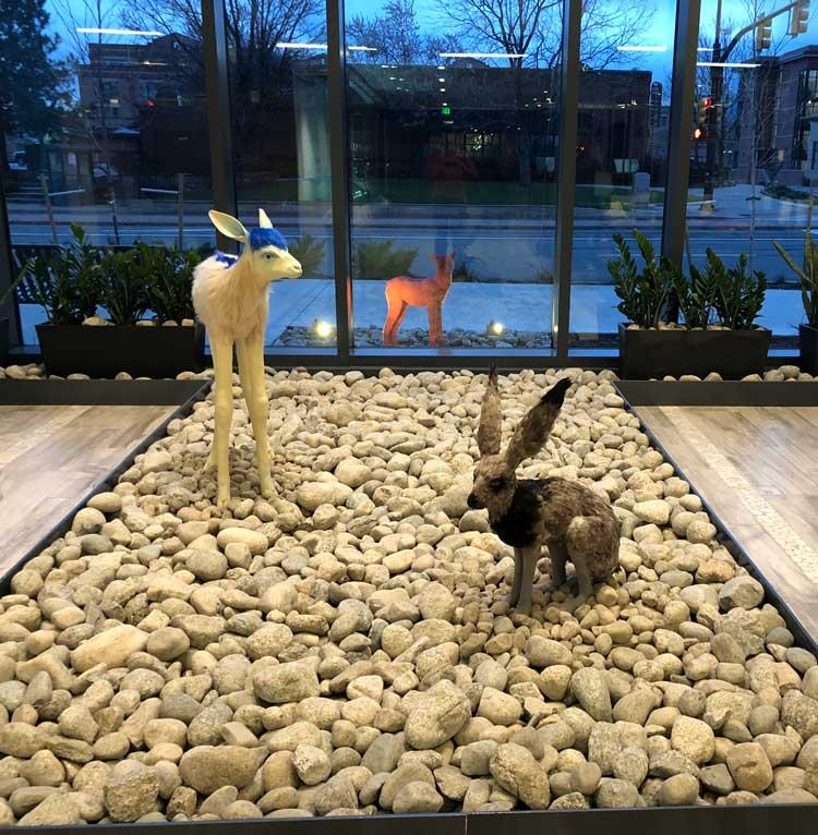 Art at the Embassy Suites Boulder