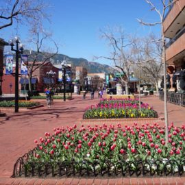 How to Enjoy Boulder with Kids