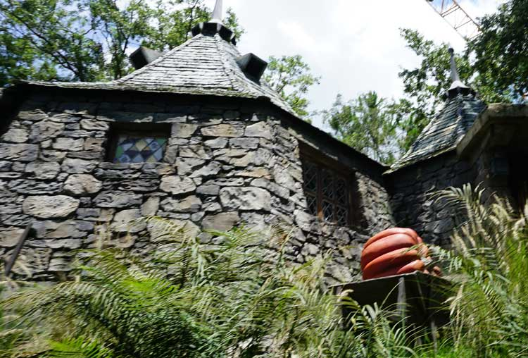 Spot Hagrid's cabin at the Wizarding World of Harry Potter