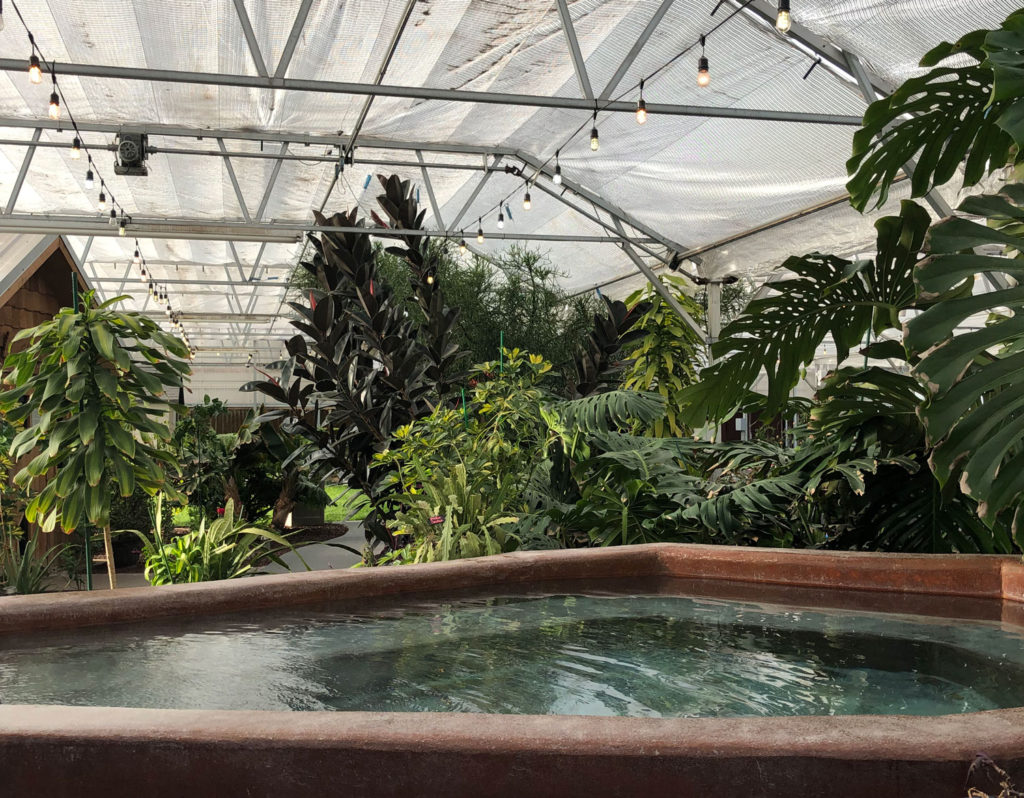One of the many hot soaking tubs at the Greenhouse, the adult pool at the Great Sand Dunes Swimming Pool.