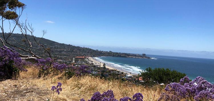 The expansive shoreline of La Jolla San Diego from Birch Aquarium