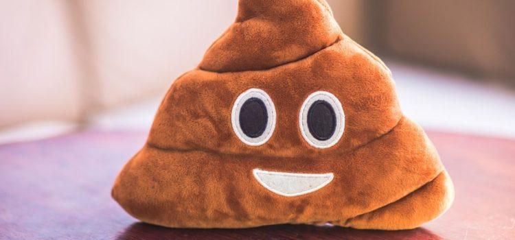 Ultimate Guide to Poop Emoji Gifts