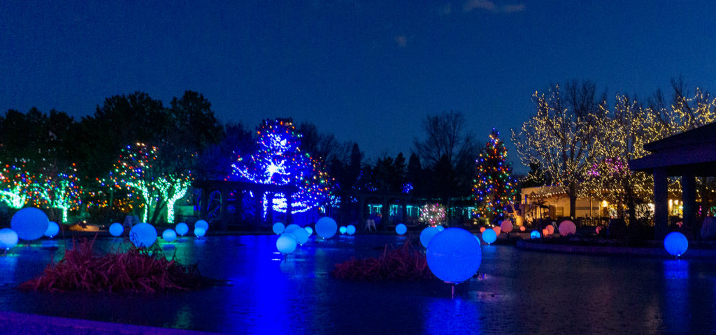 holiday lights at Denver Botanic Garden