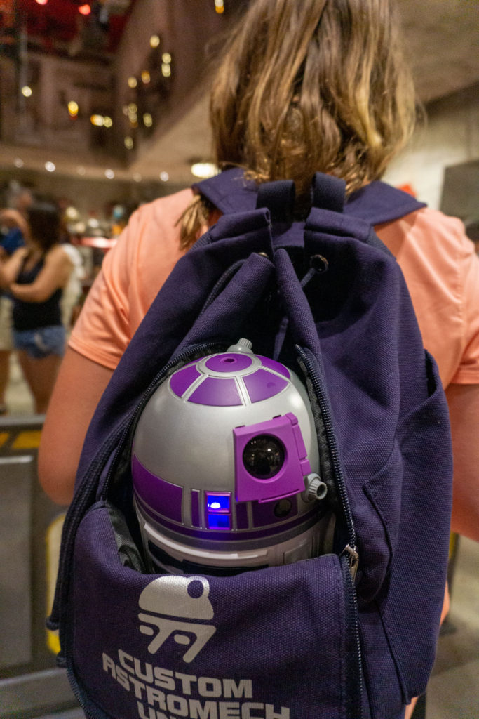 Droid backpack