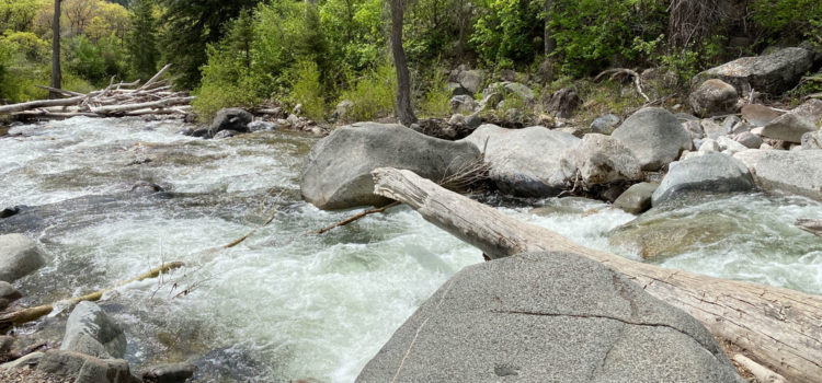 Grizzly Creek Trail: What to Know