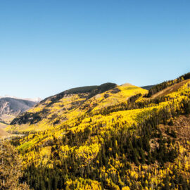Best Places to Work Remotely (and Learn Remotely) in Colorado