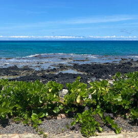 Where to Stay on the Big Island of Hawaii: Hilo or Kona Kohala?