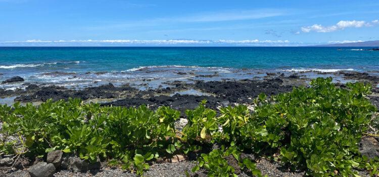Where to Stay on the Big Island of Hawaii: Hilo or Kona Kohala?