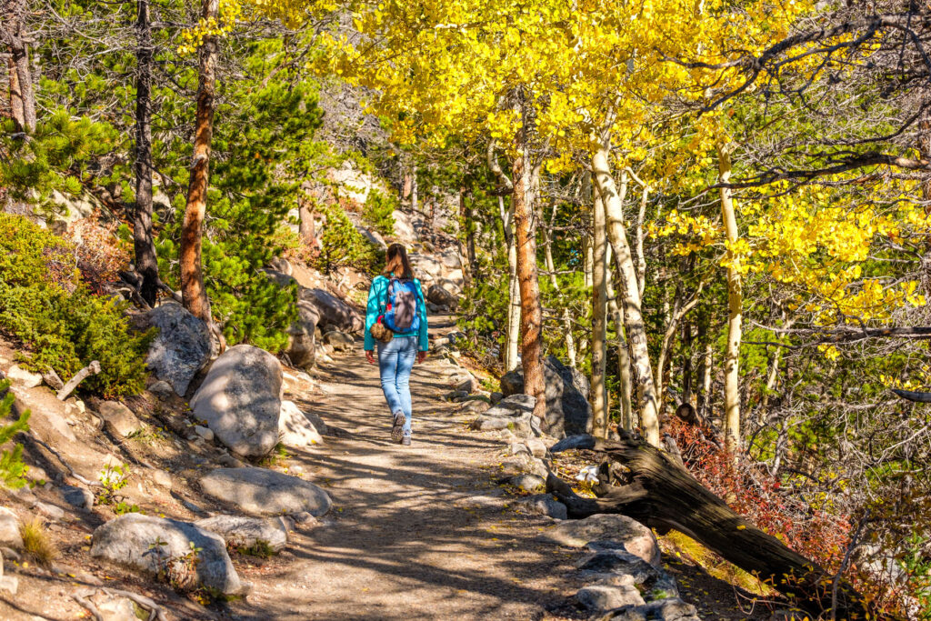 one of many beautiful fall hikes in Colorado