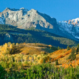 beautiful golden aspen leaves frame the mountains as seen from a fall hike in Colorado